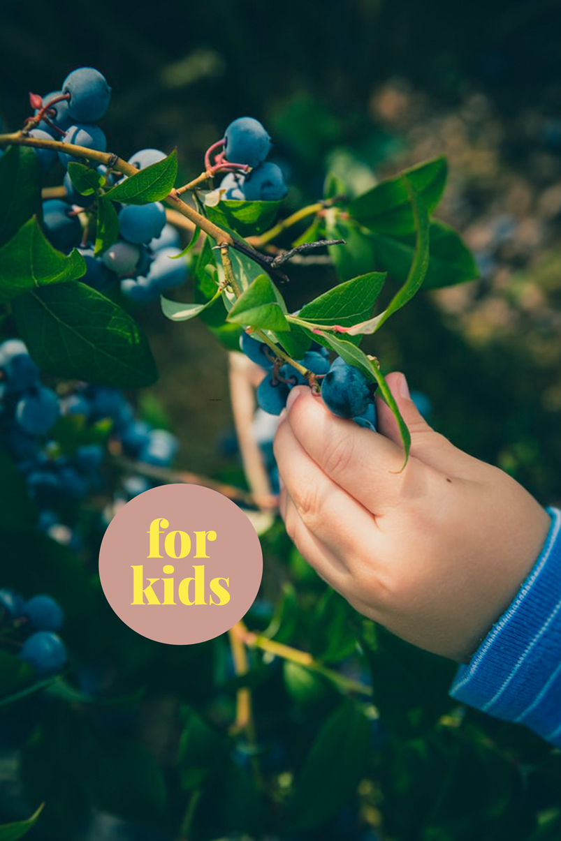 1-Tages-Ferienprogramm für Kinder: «WE DO FOOD» / 1 Day Holiday Program for Kids: